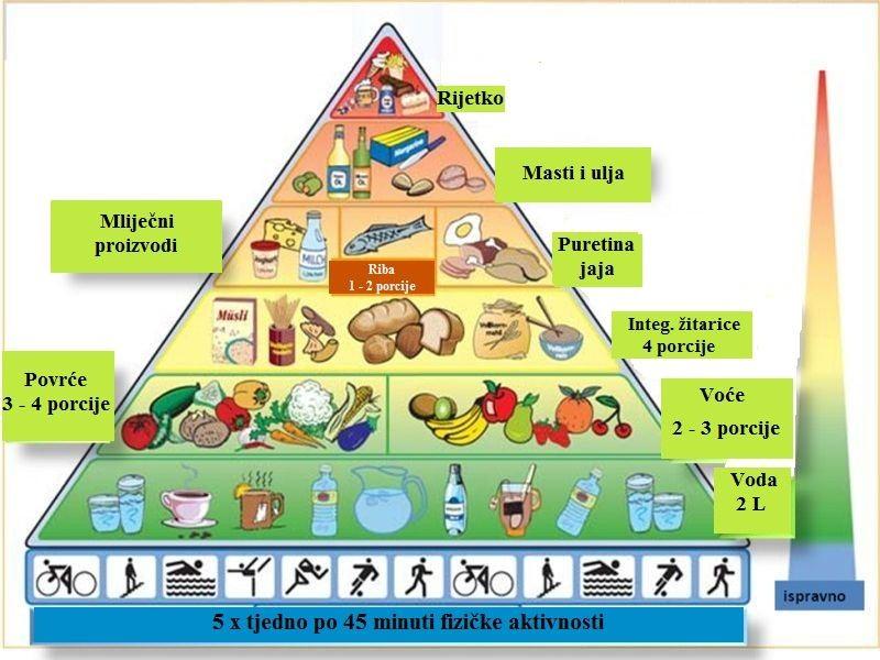 Osvrt na osnove zdrave prehrane predškolskog djeteta i rezultati Ankete unutar vrtića